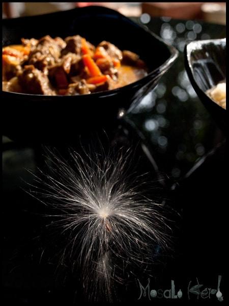 Beef Coconut gravy #stepbystep #recipe masalaherb.com
