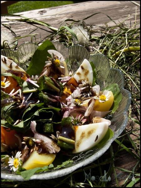 Wildflower Salad #stepbystep #recipe masalaherb.com