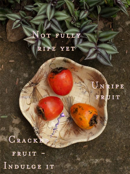 Persimmon variations #fruits masalaherb.com